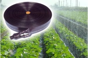 Công dụng của dây tưới phun mưa trong hệ thống tưới nông nghiệp